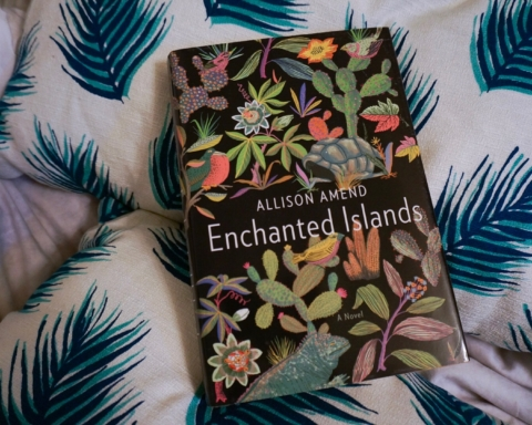 enchanted islands allison amend review